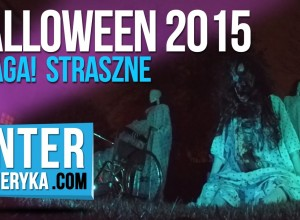 Halloween 2015 w USA